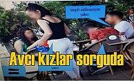 Avcı Kız operasyonunda 55 kişi tutuklandı..