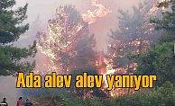 Ada alev alev yanıyor, ateş çemberi Kuşadası'ndan görülüyor,