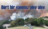 85 yerde ormanlarımız yandı, 74'ü kontrol altında
