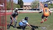 Federasyon Başkanı Pazan: Türkiye'de beyzbolun ligini oluşturduk