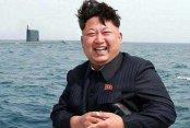 Kuzey Kore Ordusu'nda plav infazı