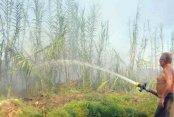 Antalya'da 3 ayrı noktada çıkan yangın korkuttu
