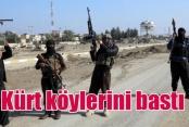 IŞİD 16 Kürt köyünü bastı, katliamından korkuluyor