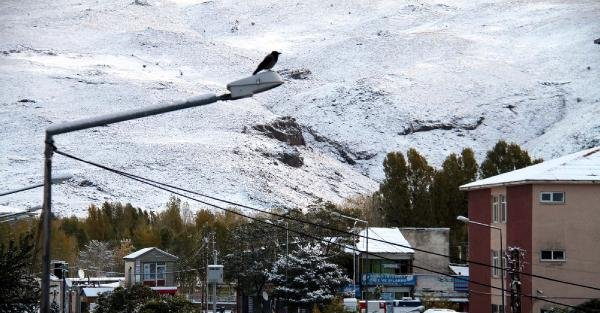 Van'da Kar Yağışı (2)