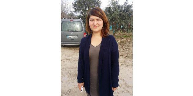 Yırca'da Köylüler Dövüldü, 6 Bin Zeytin Ağacı Kesildi (4)