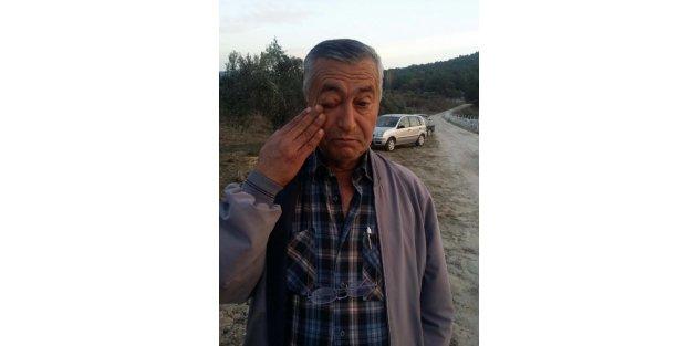 Yırca'da Köylüler Dövüldü, 6 Bin Zeytin Ağacı Kesildi -ek Fotoğraf