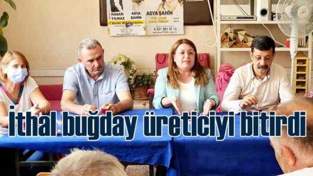 Gülizar Biçer Karaca | Buğday ithalatıyla üreticiyi bitirdiler